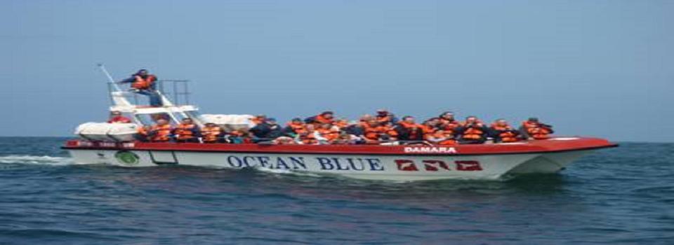 Ocean Blue Adventures