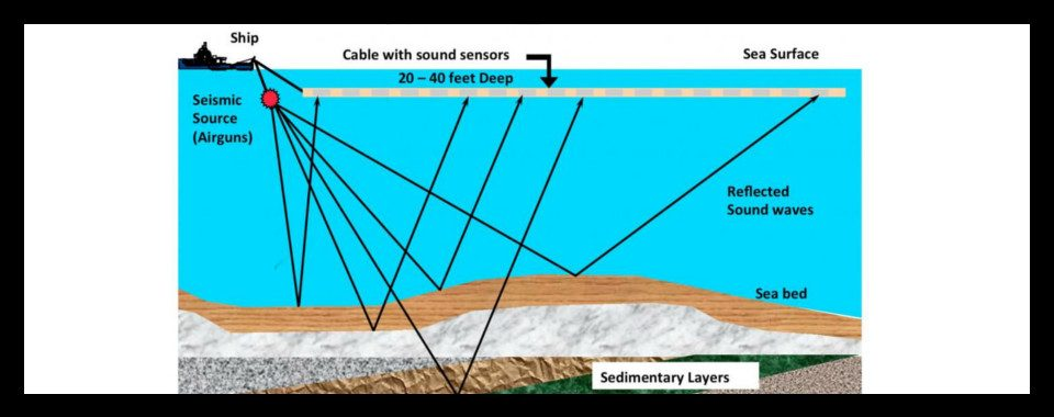 seismic survey