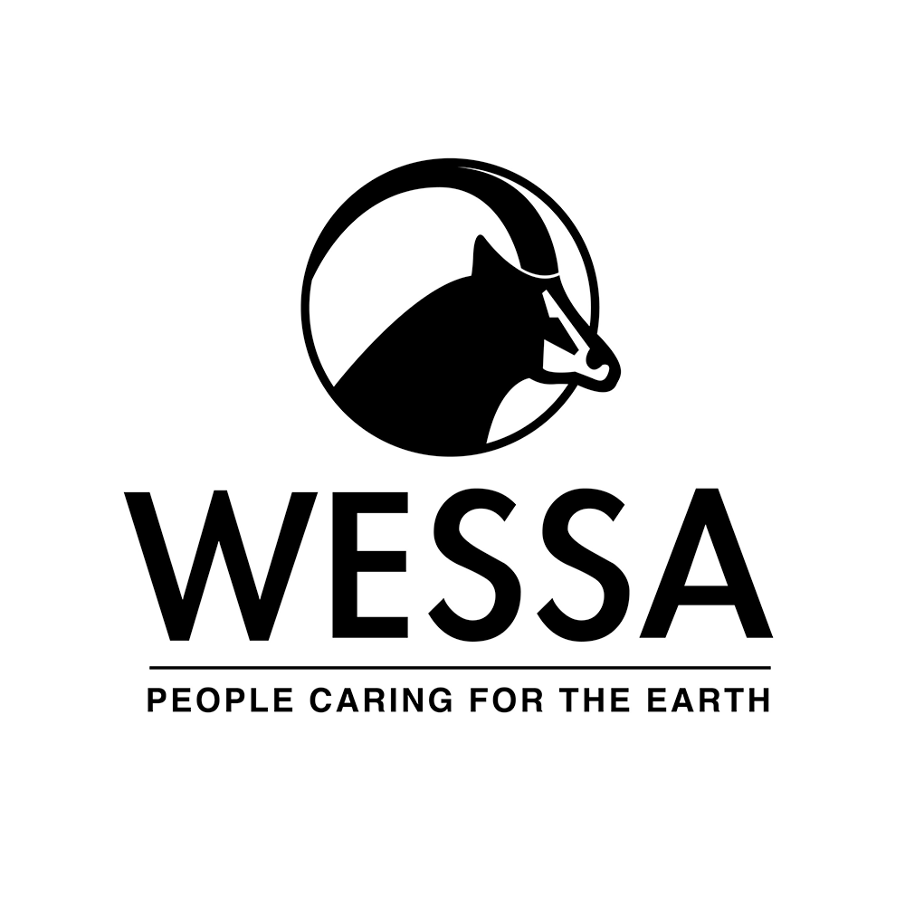 logo for the wessa icon on the ocean blue adventures website